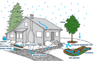 Seattle and other cities offer rebates for rainwater collection systems