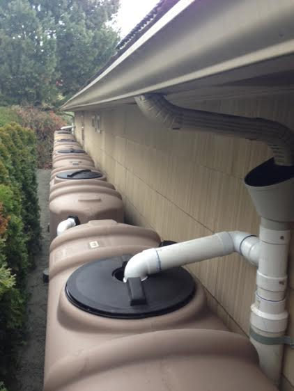 Rainwater Collection In Washington State Where To Begin
