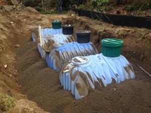 Seattle Homeowners Save Money With Rainwater Collection2