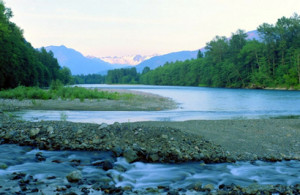skagit-river-looking-east_med